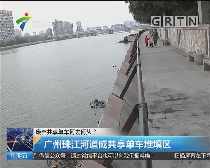 废弃共享单车何去何从? 广州珠江河道成共享单车堆填区