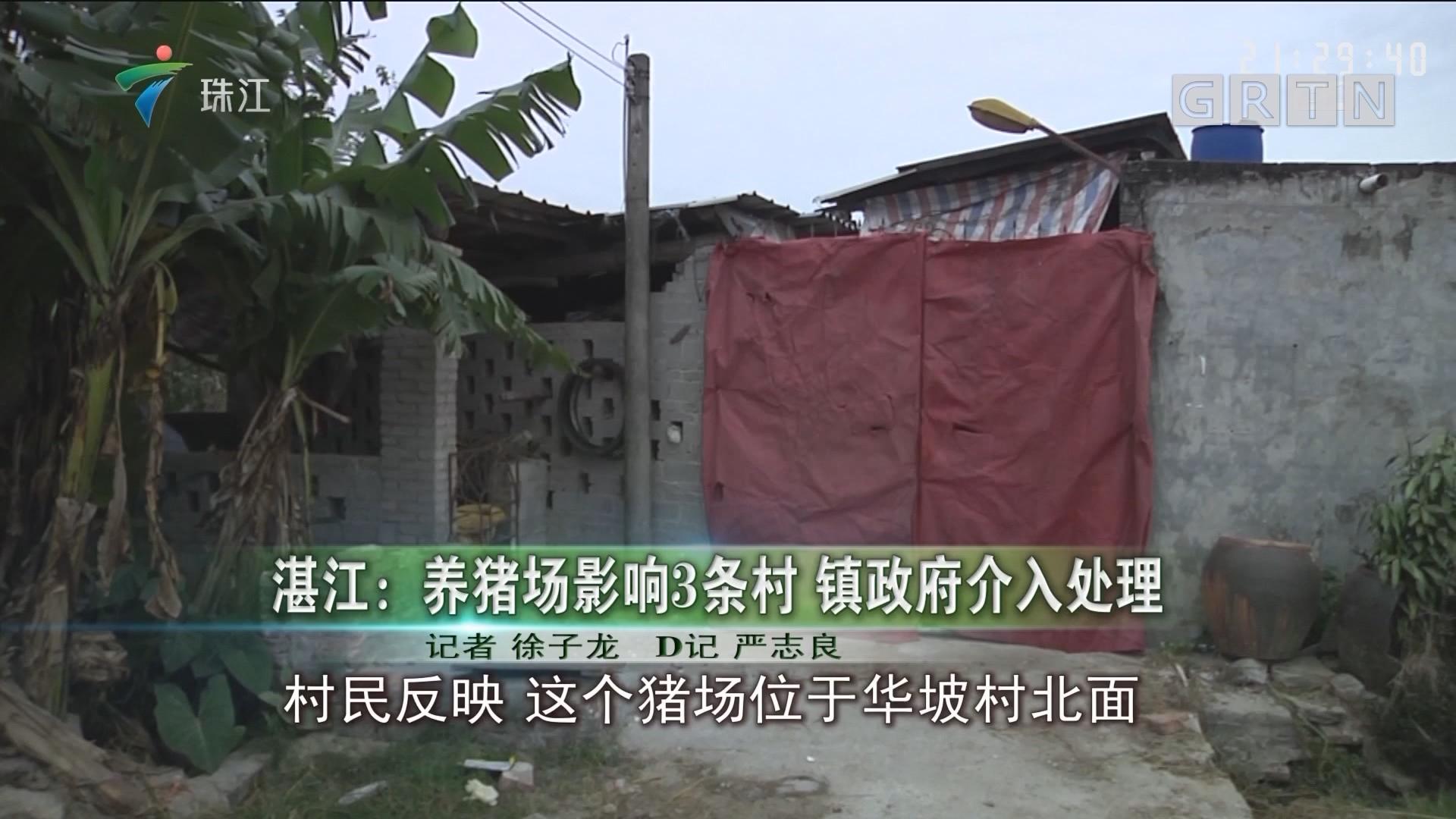 湛江:养猪场影响3条村 镇政府介入处理