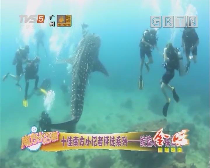 [2019-02-12]南方小记者:十佳南方小记者评选系列——鲸鲨小小保育员
