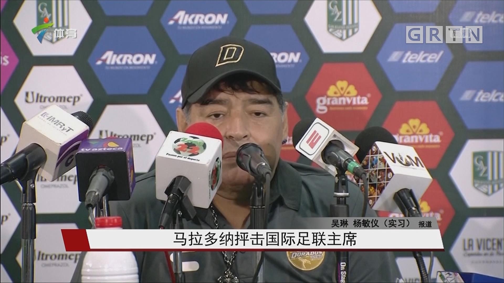 马拉多纳抨击国际足联主席