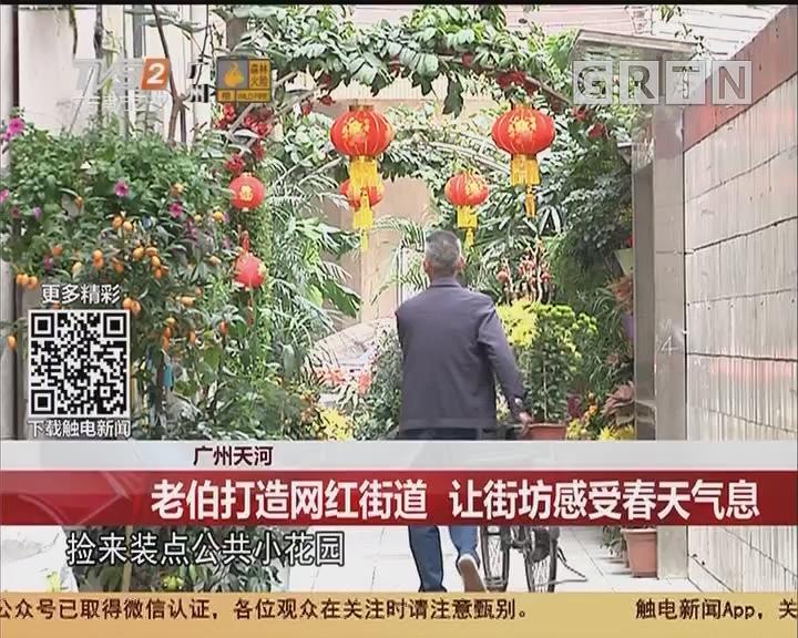 广州天河:老伯打造网红街道 让街坊感受春天气息