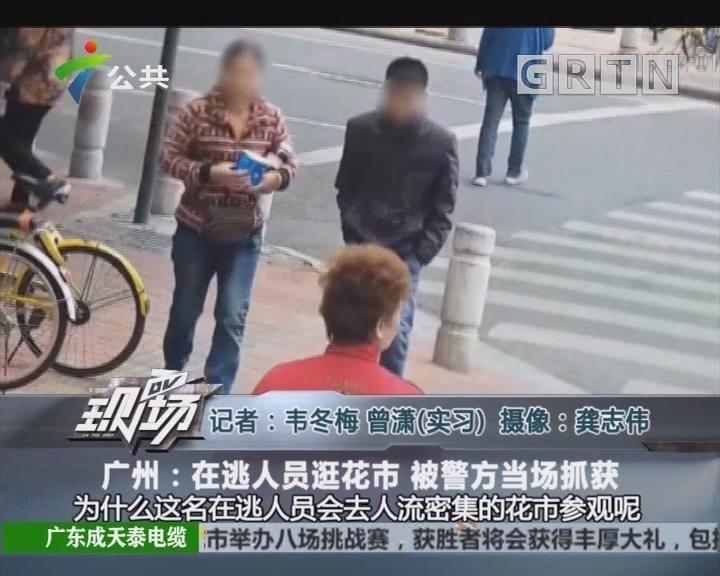 广州:在逃人员逛花市 被警方当场抓获