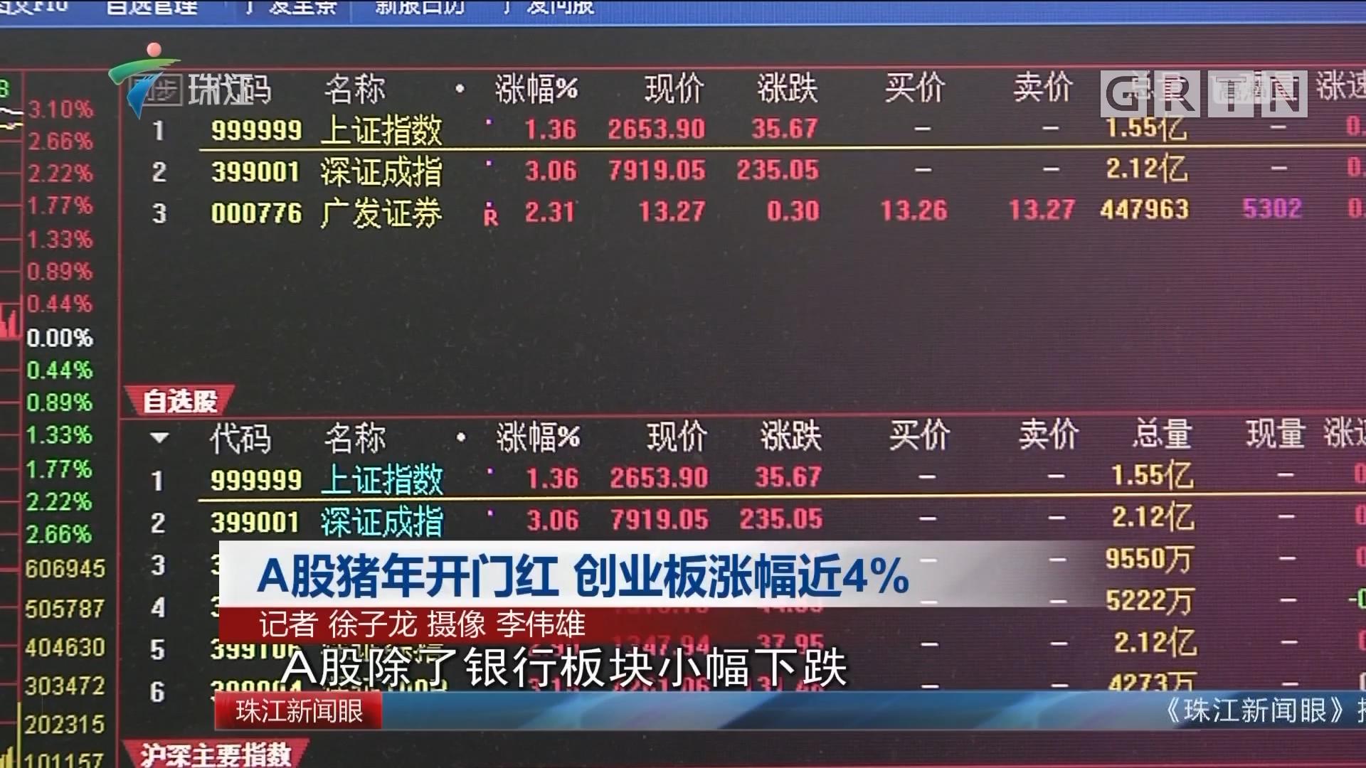 A股猪年开门红 创业板涨幅近4%