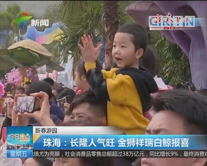 新春游园 珠海:长隆人气旺 金狮祥瑞白鲸报喜