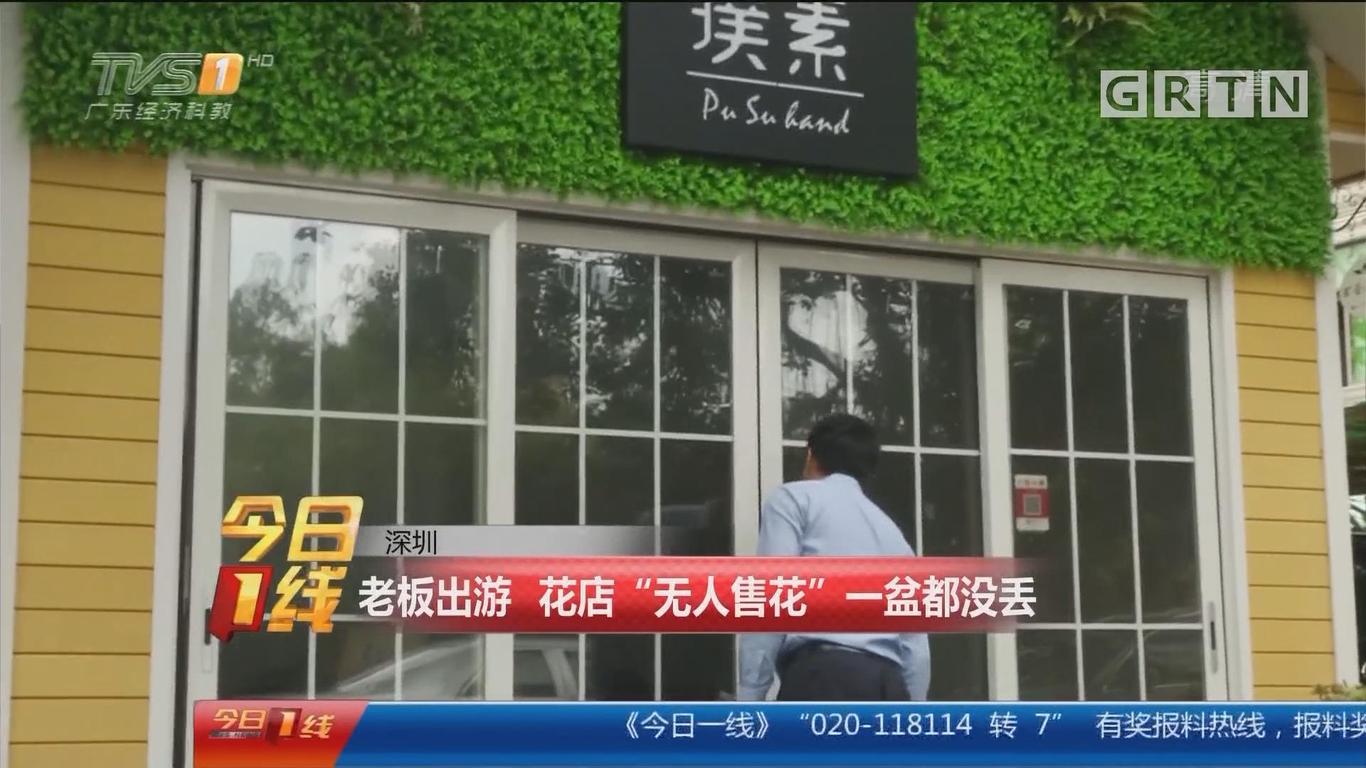 """深圳:老板出游 花店""""无人售花"""" 一盆都没丢"""