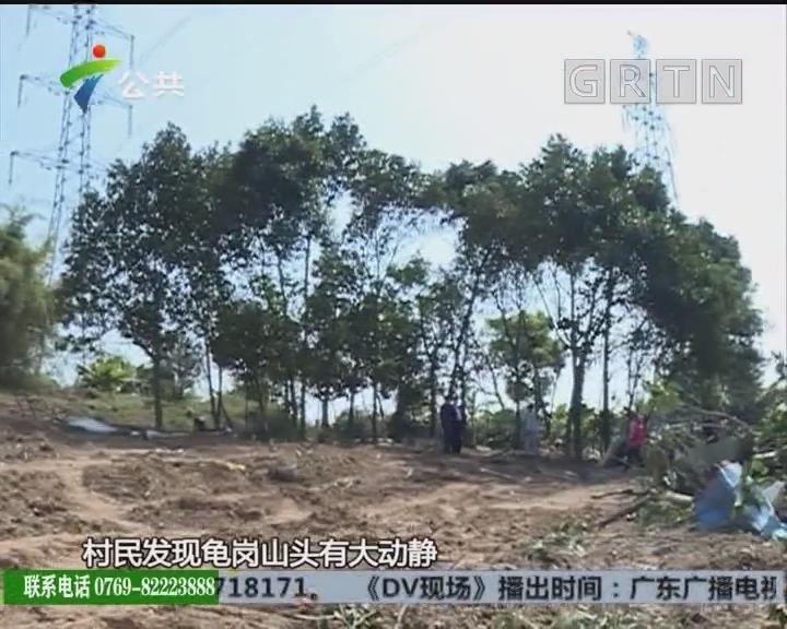 村民求助:山坟和农作物被大面积推倒