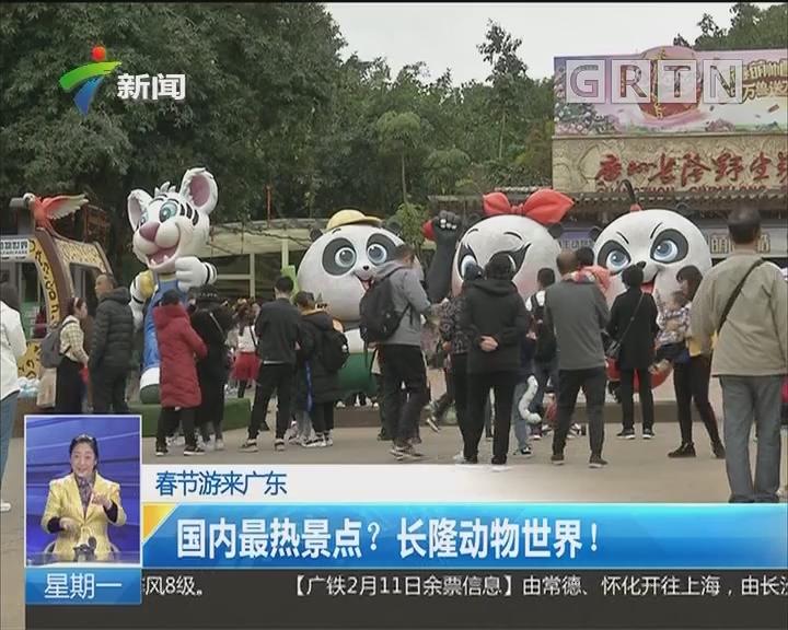 春节游来广东:国内最热景点?长隆动物世界!