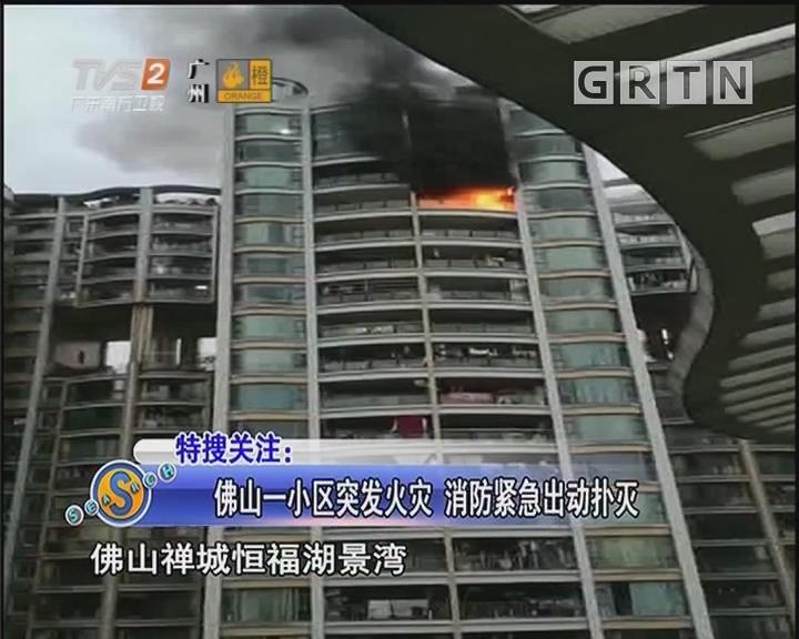 佛山一小区突发火灾 消防紧急出动扑灭