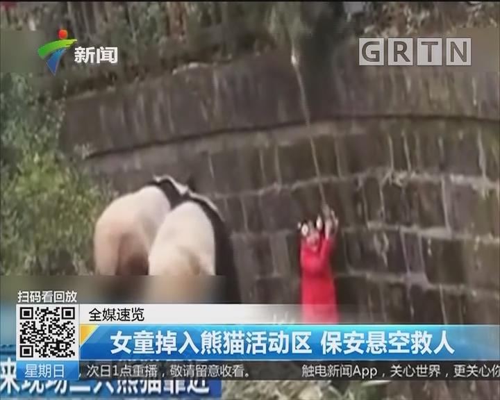 女童掉入熊猫活动区 保安悬空救人