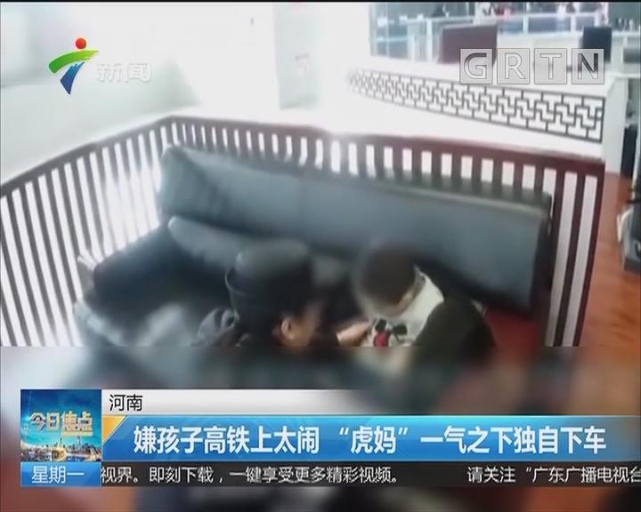 """河南:嫌孩子高铁上太闹 """"虎妈""""一气之下独自下车"""