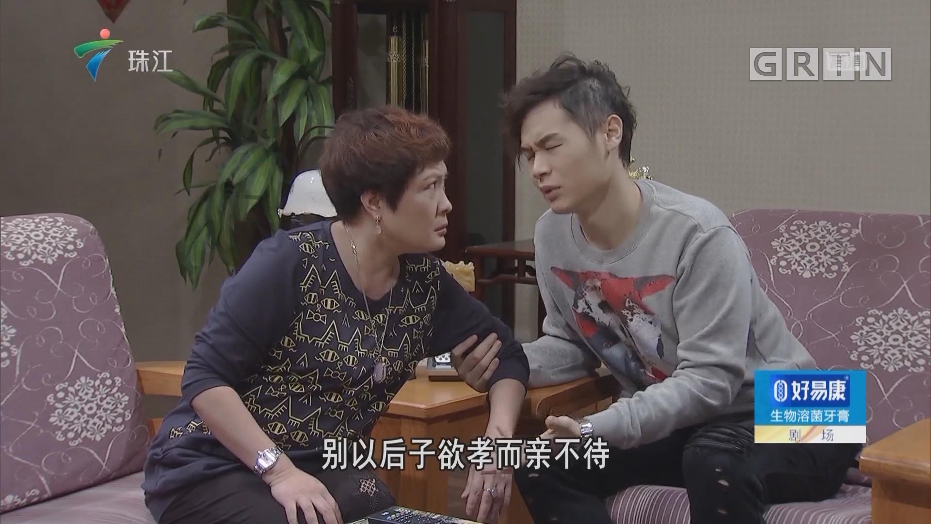[HD][2019-02-17]外来媳妇本地郎:欢喜冤家(上)
