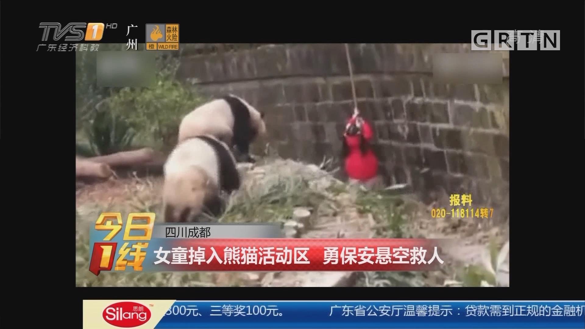四川成都:女童掉入熊猫活动区 勇保安悬空救人