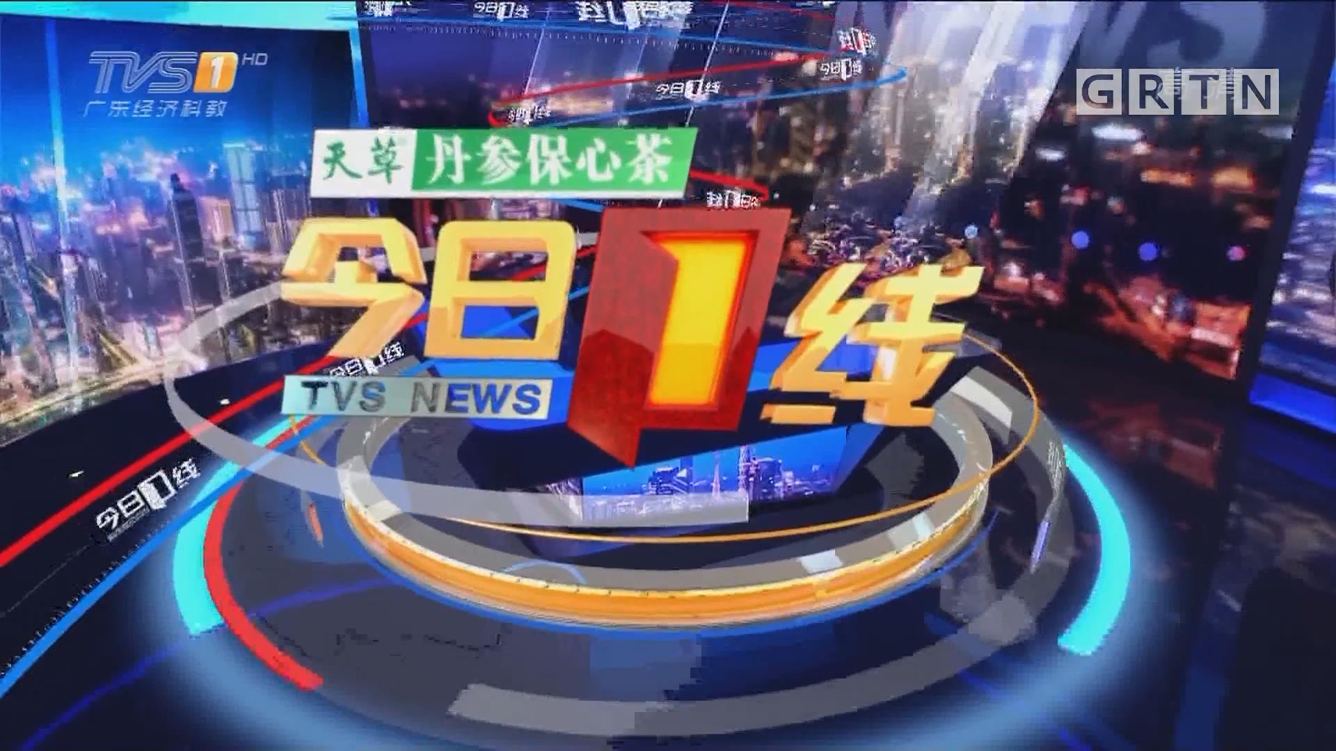 [HD][2019-02-27]今日一线:湛江雷州:国家级湿地公园旁 植被遭严重破坏