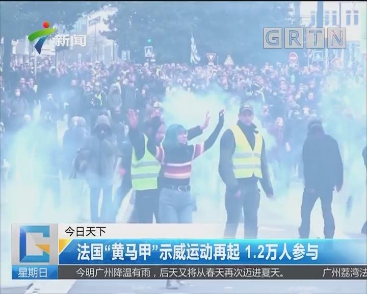 """法国""""黄马甲""""示威运动再起 1.2万人参与"""