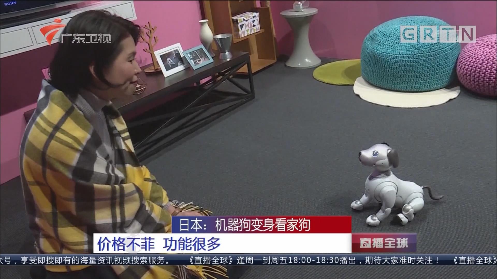 日本:机器狗变身看家狗 价格不菲 功能很多