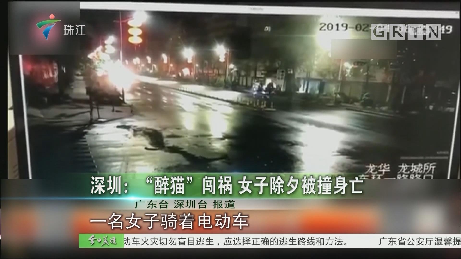 """深圳:""""醉猫""""闯祸 女子除夕被撞身亡"""