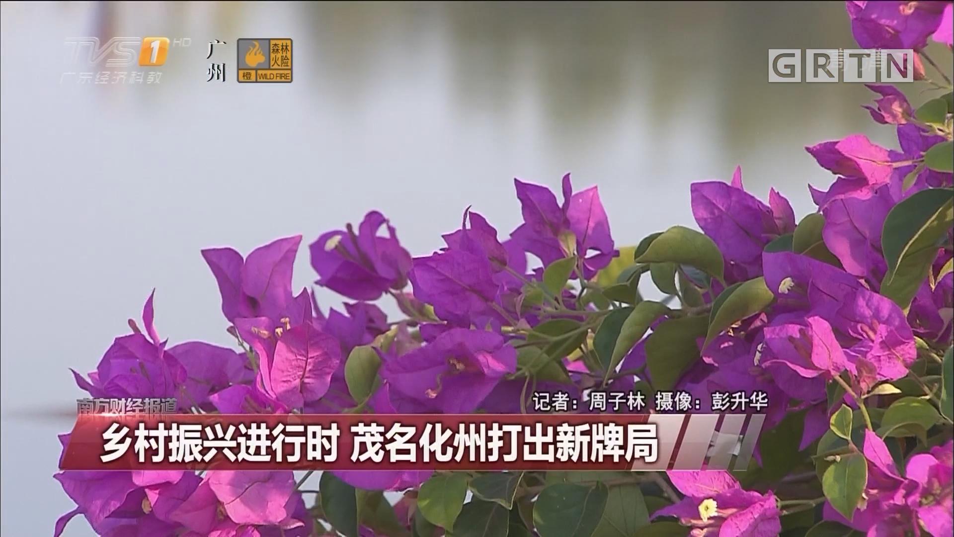 乡村振兴进行时 茂名化州打出新牌局