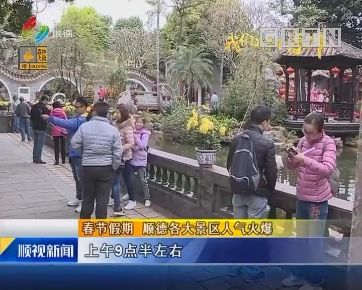 春节假期 顺德各大景区人气火爆