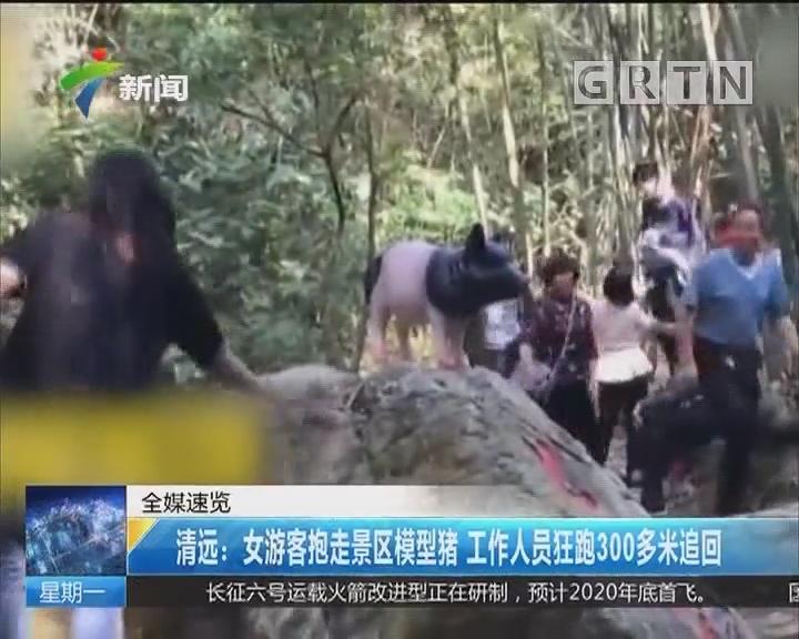 清远:女游客抱走景区模型猪 工作人员狂跑300多米追回