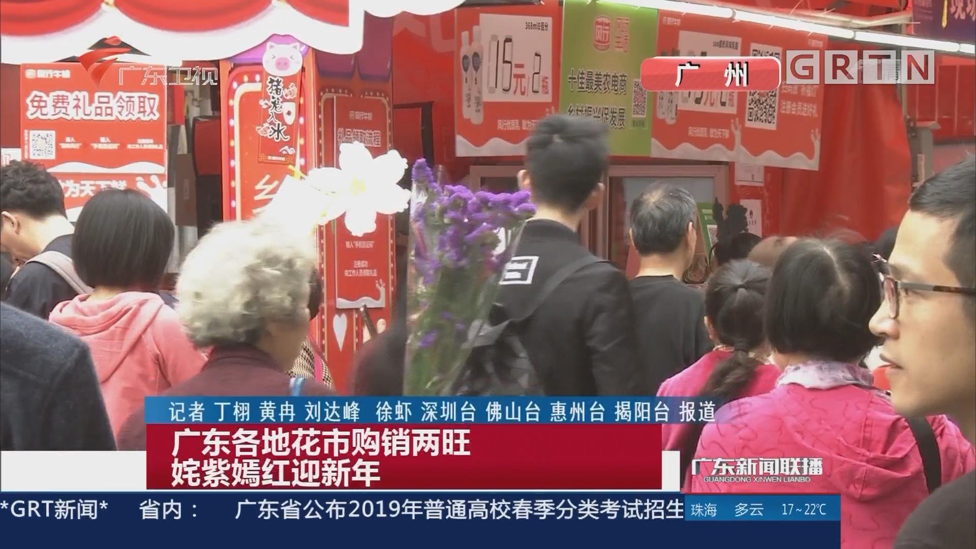 广东各地花市购销两旺 姹紫嫣红迎新年