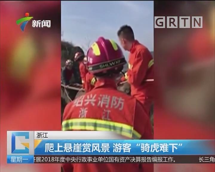 """浙江:爬上悬崖赏风景 游客""""骑虎难下"""""""