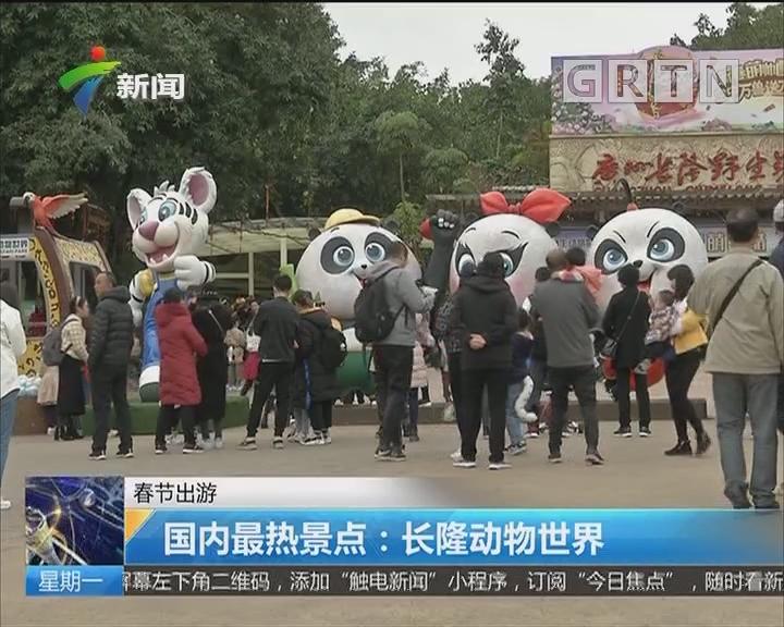 春节出游 国内最热景点:长隆动物世界