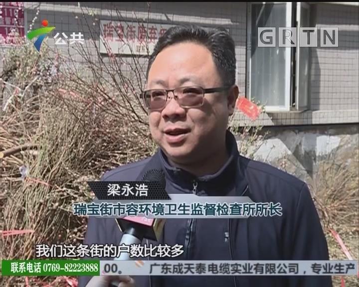 广州公布566个废弃年花年桔临时收集点