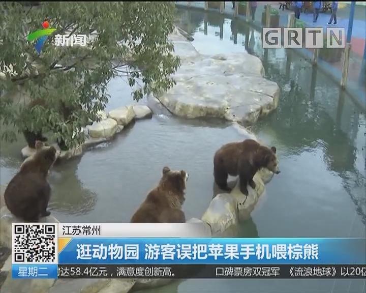 江苏常州:逛动物园 游客误把苹果手机喂棕熊