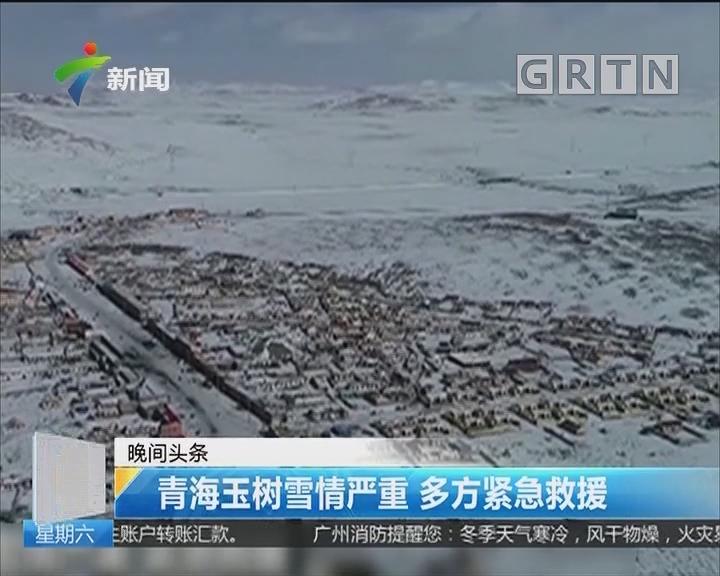青海玉树雪情严重 多方紧急救援