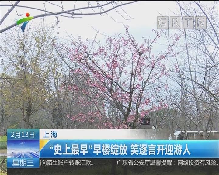 """上海:""""史上最早""""早樱绽放 笑逐言开迎游人"""