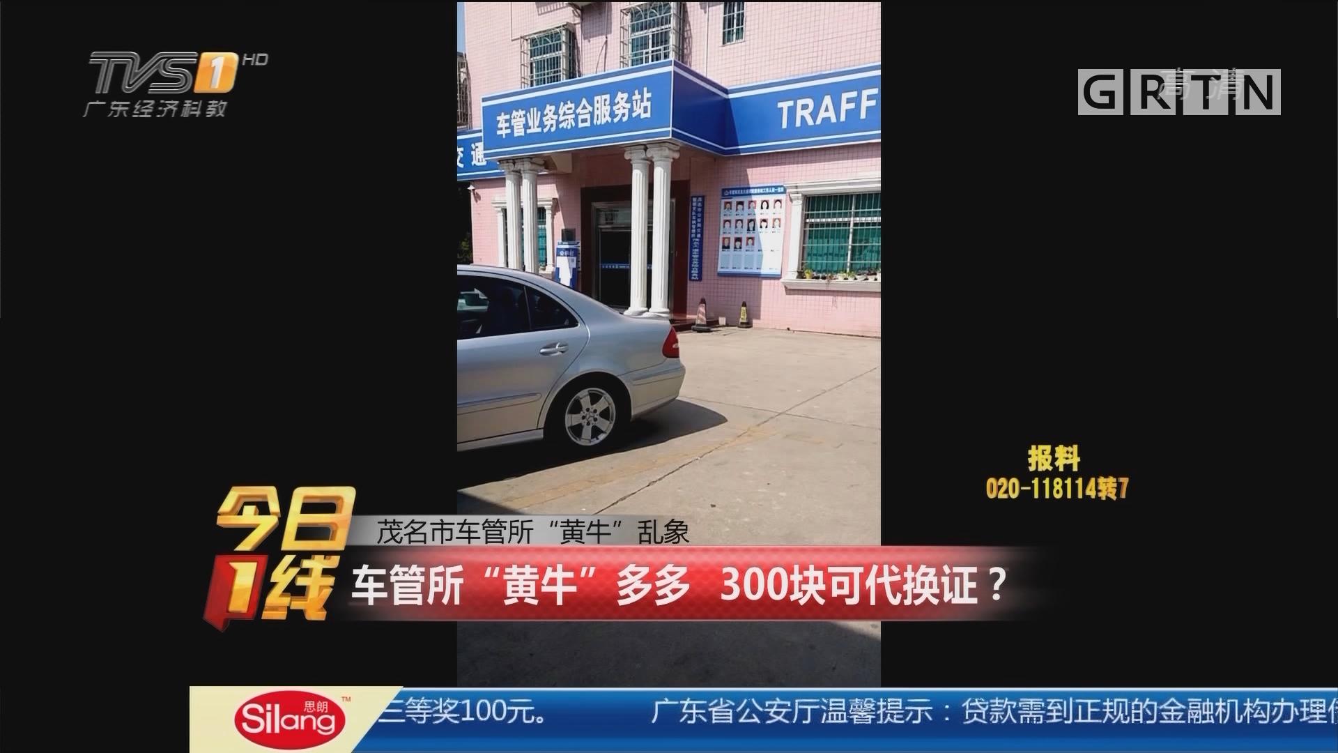 """茂名市车管所""""黄牛""""乱象:车管所""""黄牛""""多多 300块可代换证?"""