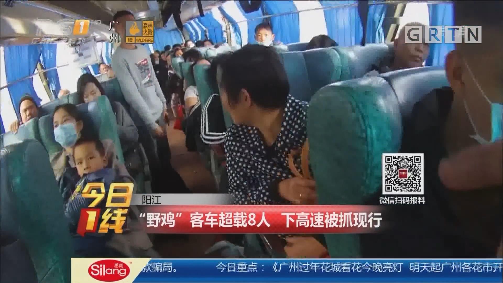 """阳江:""""野鸡""""客车超载8人 下高速被抓现行"""