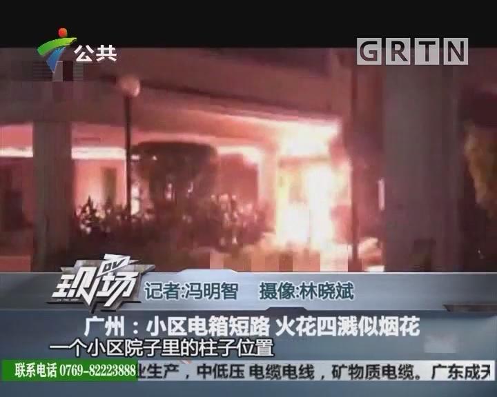 广州:小区电箱短路 火花四溅似烟花