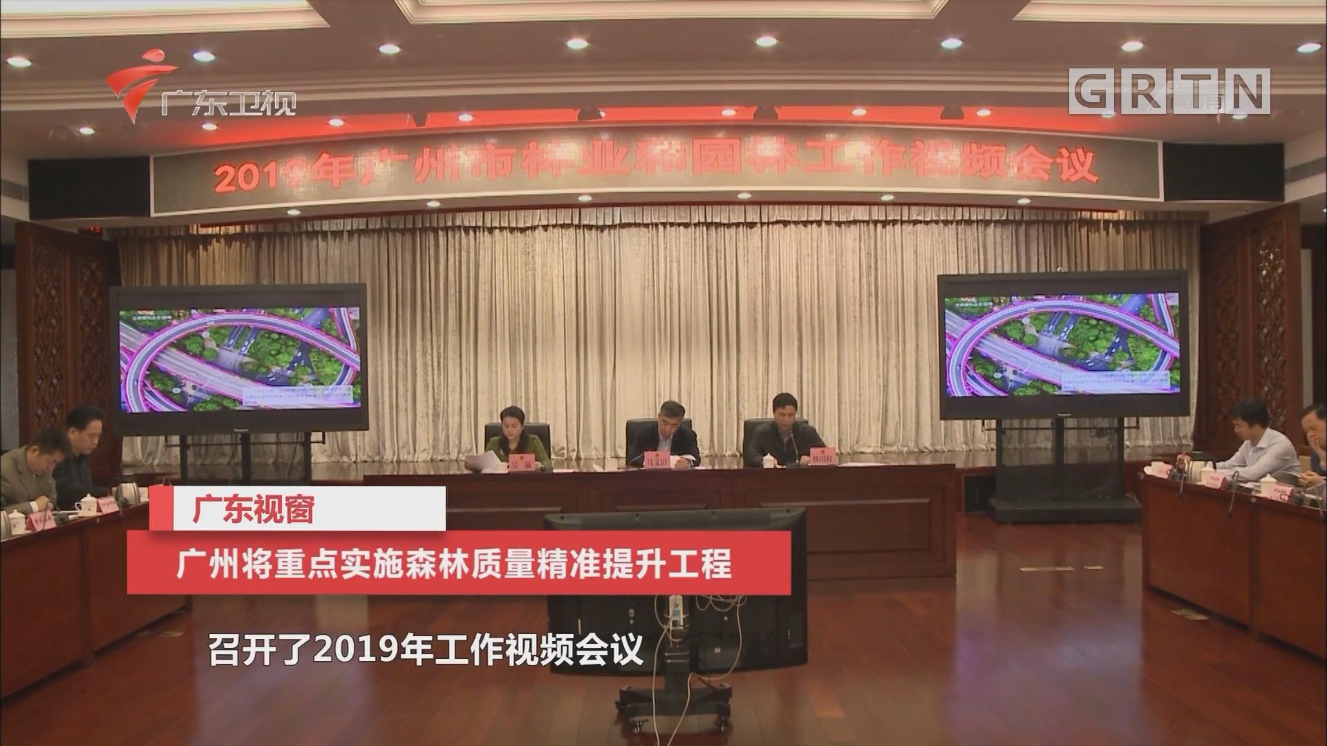 广州将重点实施森林质量精准提升工程