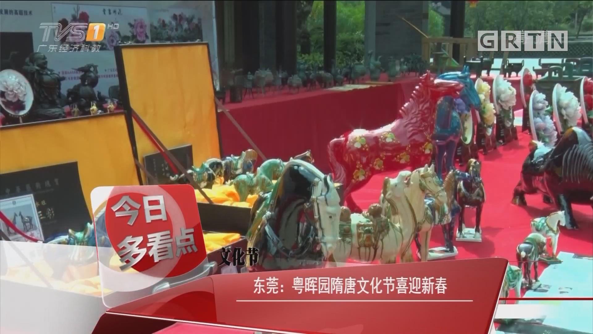 文化节 东莞:粤晖园隋唐文化节喜迎新春