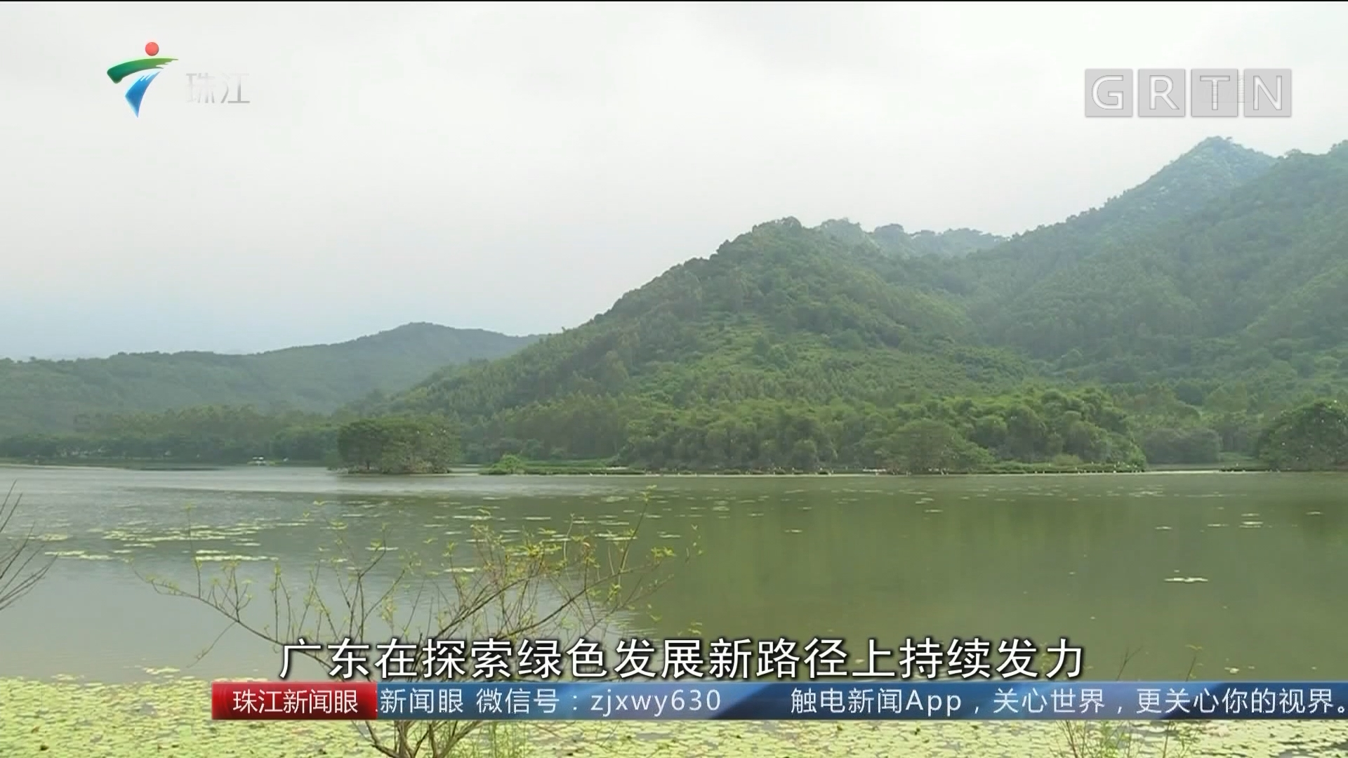 广东:生态环境持续改善 探索绿色发展新路径