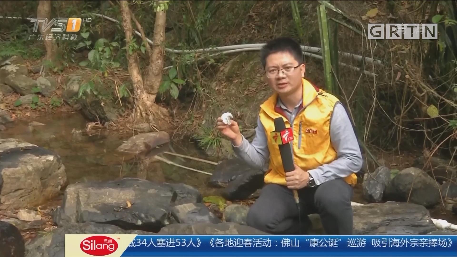 阳江阳春:饮用水源疑遭机油污染? 警方介入调查