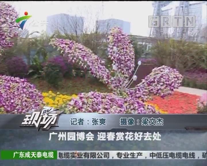广州园博会 迎春赏花好去处