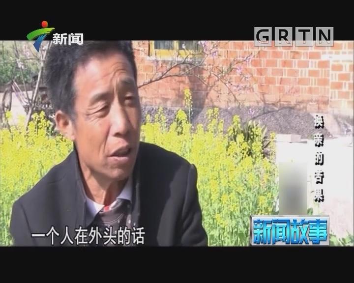 [2019-02-05]新闻故事:换亲的苦果