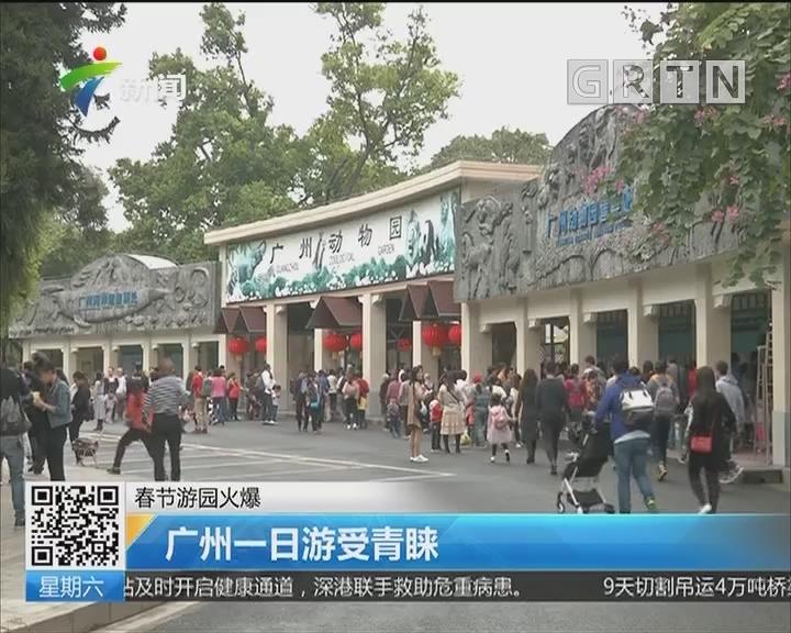 春节游园火爆:广州一日游受青睐