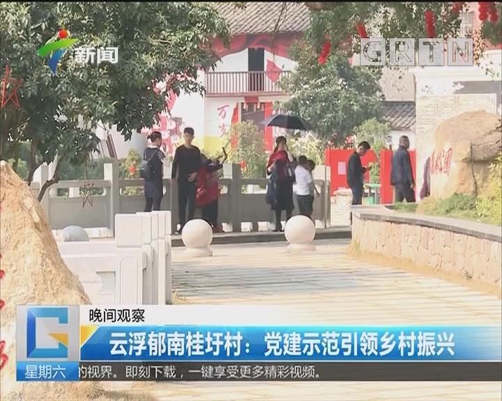 云浮郁南桂圩村:党建示范引领乡村振兴