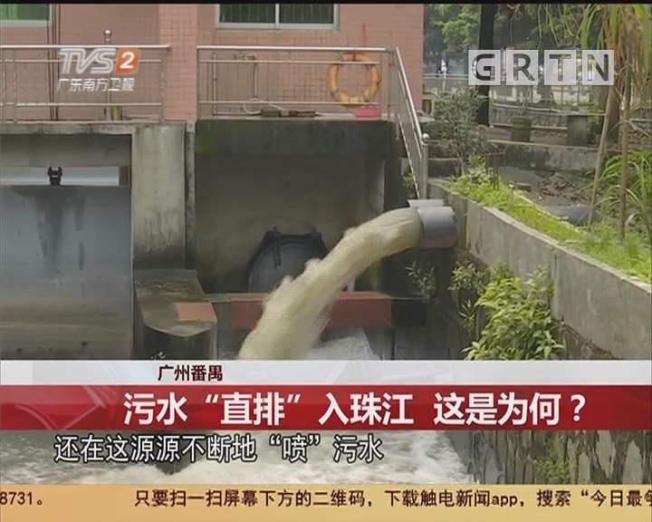 """广州番禺:污水""""直排""""入珠江 这是为何?"""