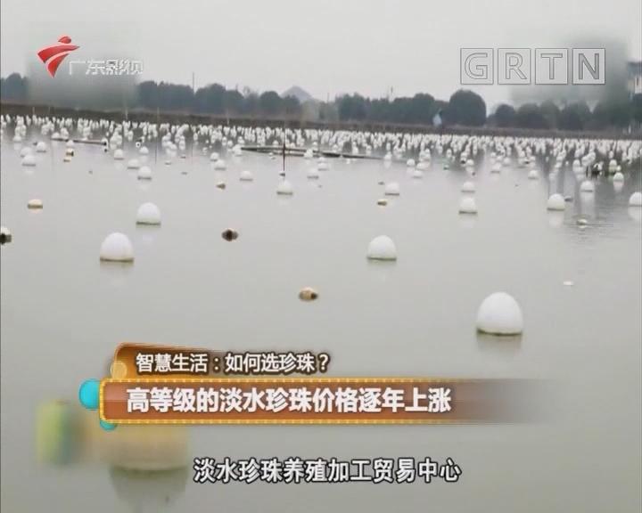 高等级的淡水珍珠价格逐年上涨