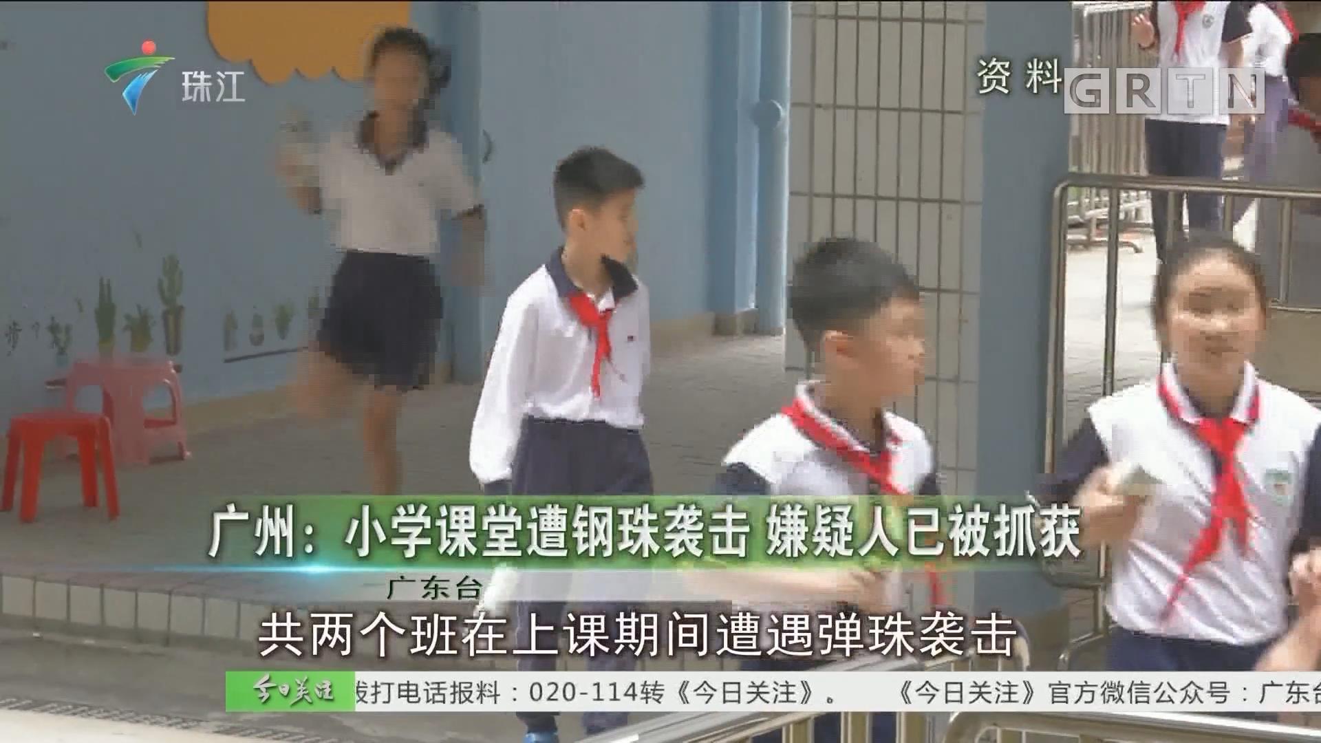 广州:小学课堂遭钢珠袭击 嫌疑人已被抓获