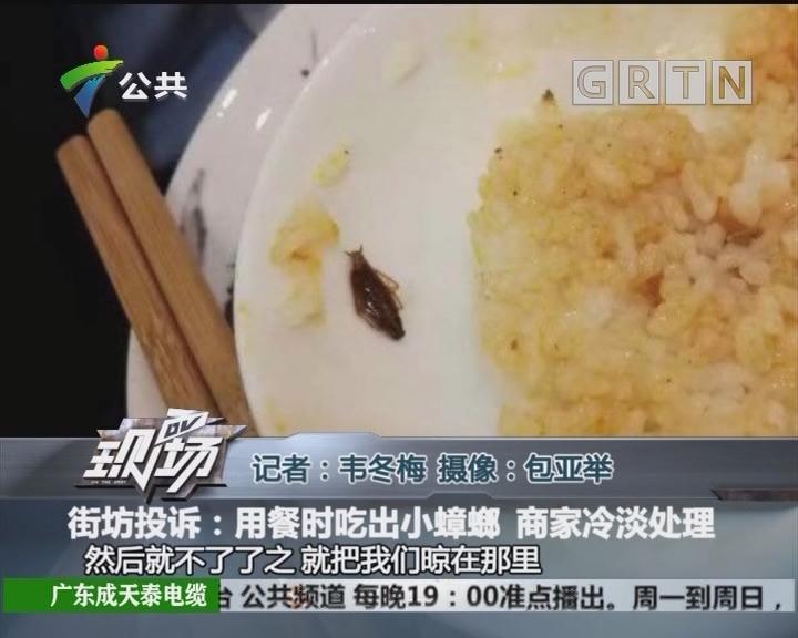 街坊投诉:用餐时吃出小蟑螂 商家冷淡处理