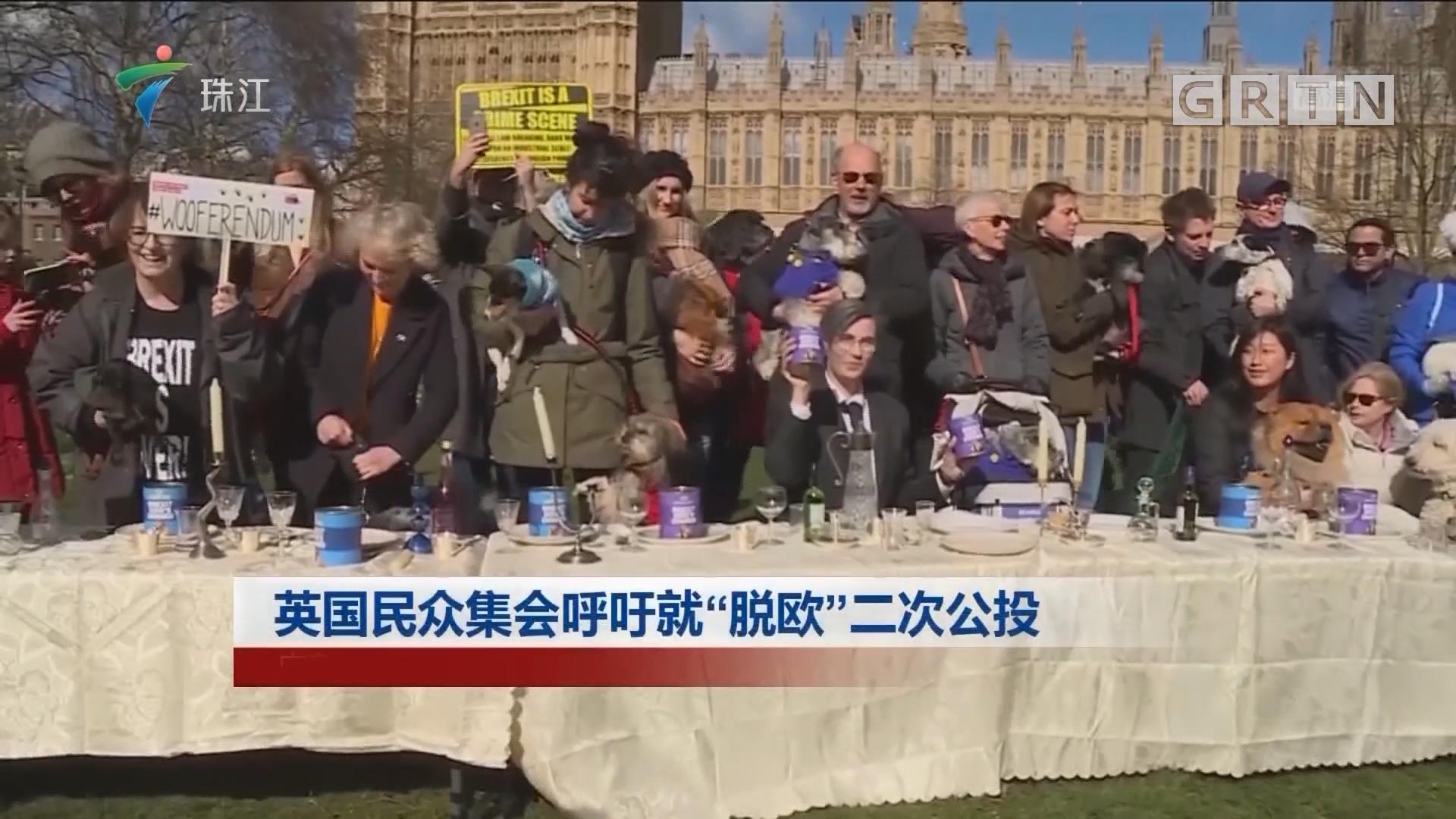 """英国民众集会呼吁就""""脱欧""""二次公投"""