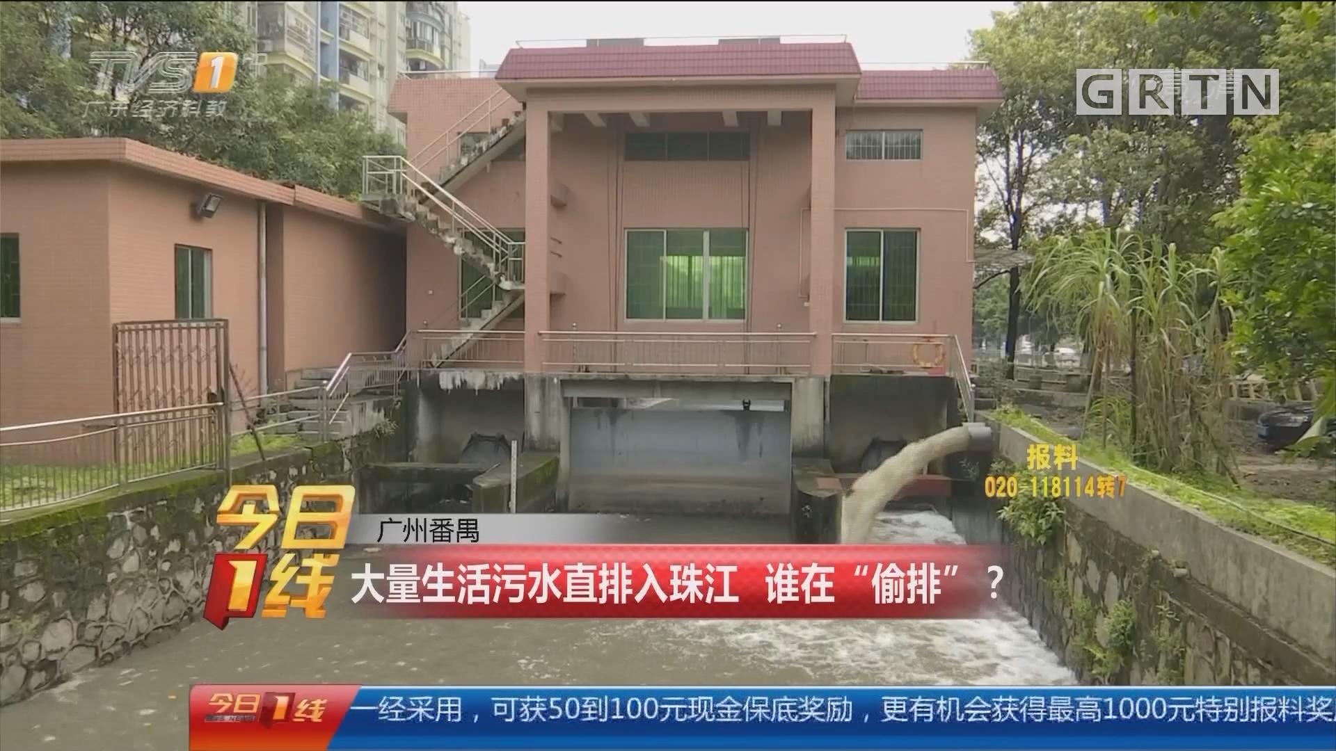 """广州番禺:大量生活污水直排入珠江 谁在""""偷排""""?"""