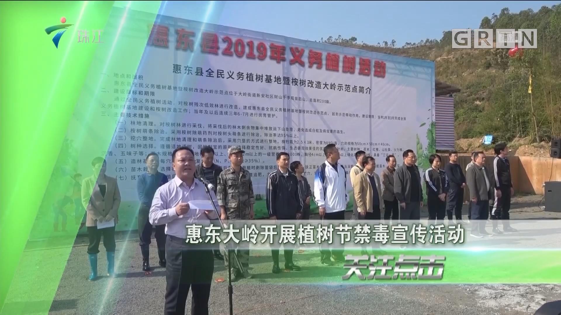 惠东大岭开展植树节禁毒宣传活动