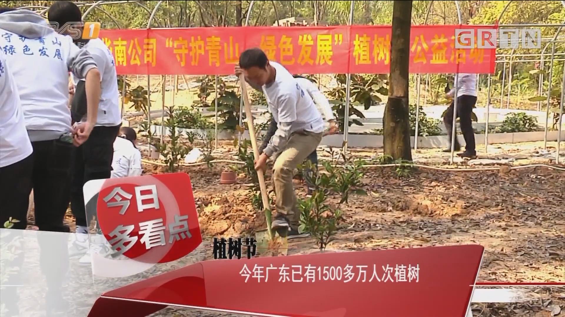 植树节:今年广东已有1500多万人次植树