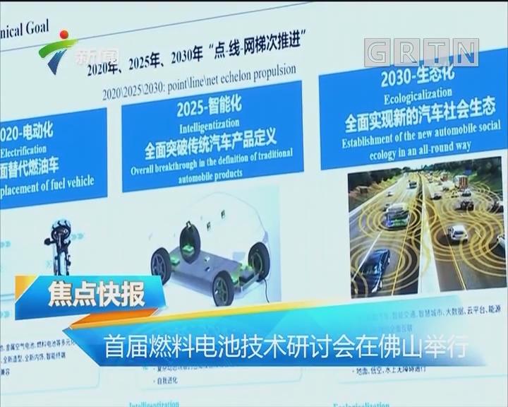 首届燃料电池技术研讨会在佛山举行